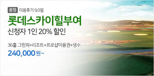 롯데스카이힐부여 20%
